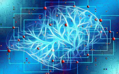 Les différents domaines d'application de l'Intelligence artificielle